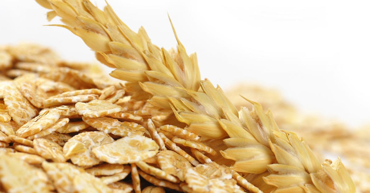Glutenvrije en lactosevrije sportvoeding